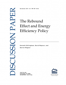 The Rebound Effect and Energy Efficiency Policy